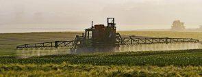 agriculture-1359862_1280-pixabay-com (Monsanto: erste Verurteilung in den USA)