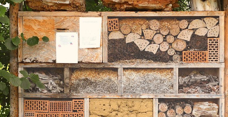 insect-house-1778906_1280