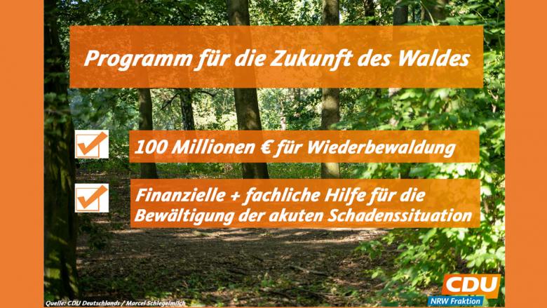 franken-wald (NRW forstet auf – Erklärung verabschiedet)